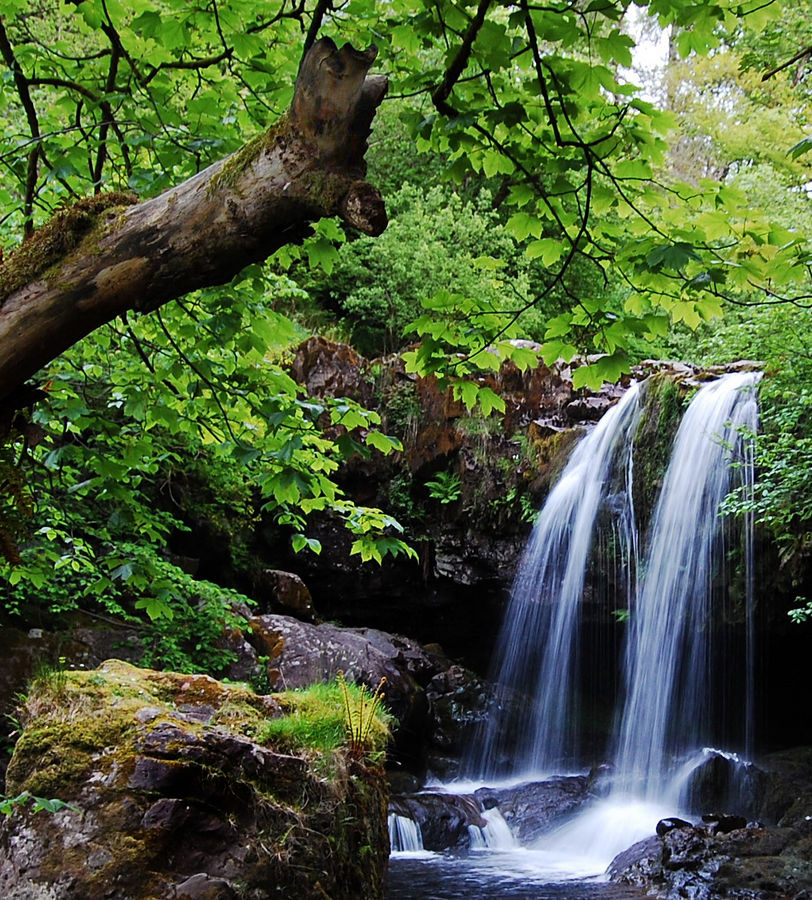 Waterfall On The Campsie Fells