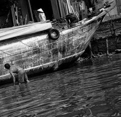 watership.down