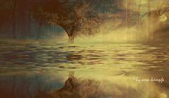 waterworld 2
