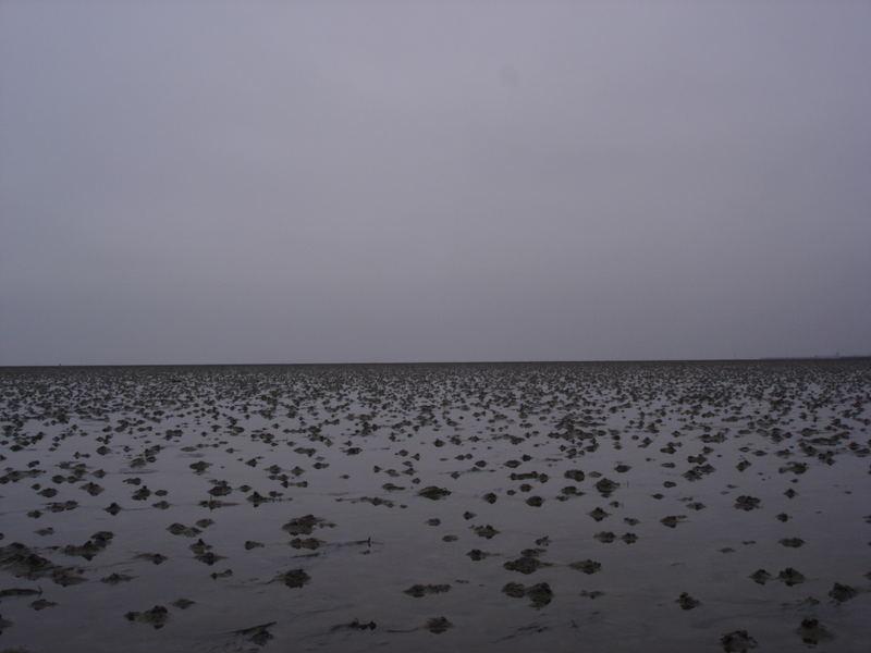 Wattlandschaft bei Ebbe