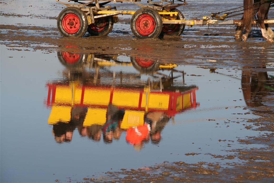 Wattwagen bei Cuxhaven