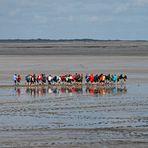 Wattwanderung - Kurzurlaub an der Nordsee in Neuharlingersiel