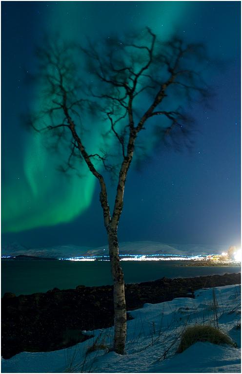 ~ waves to aurora ~