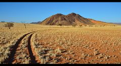 Way through Namib Rand...