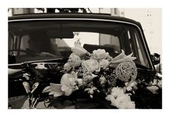 Wedding -3-