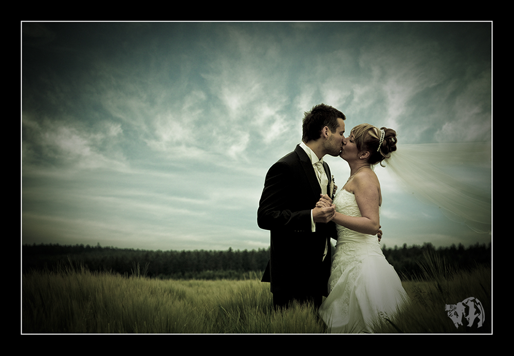 :: Wedding Field ::