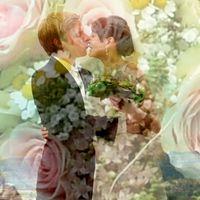 wedding photography merk
