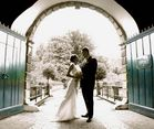 Wedding Photography V