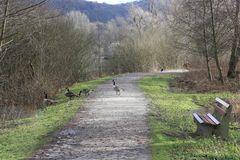 Weg am Bruchsee