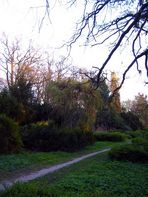 Weg durch den alten Friedhof