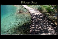 Weg durch die Plitvicer Seen