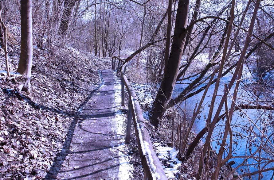 Weg durch Natur
