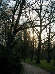 Weg im Park