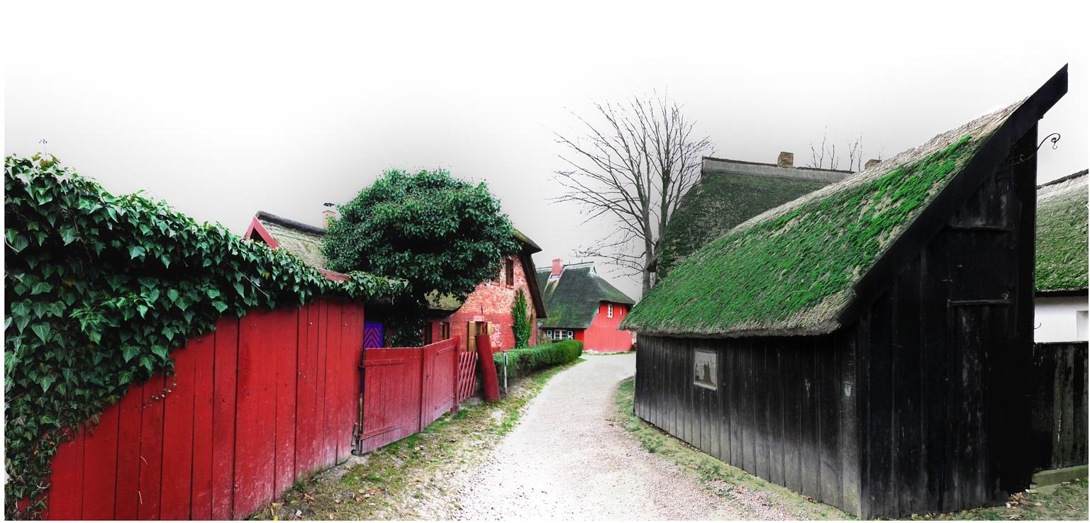 Weg in Ahrenshoop (Darß, Ostsee)