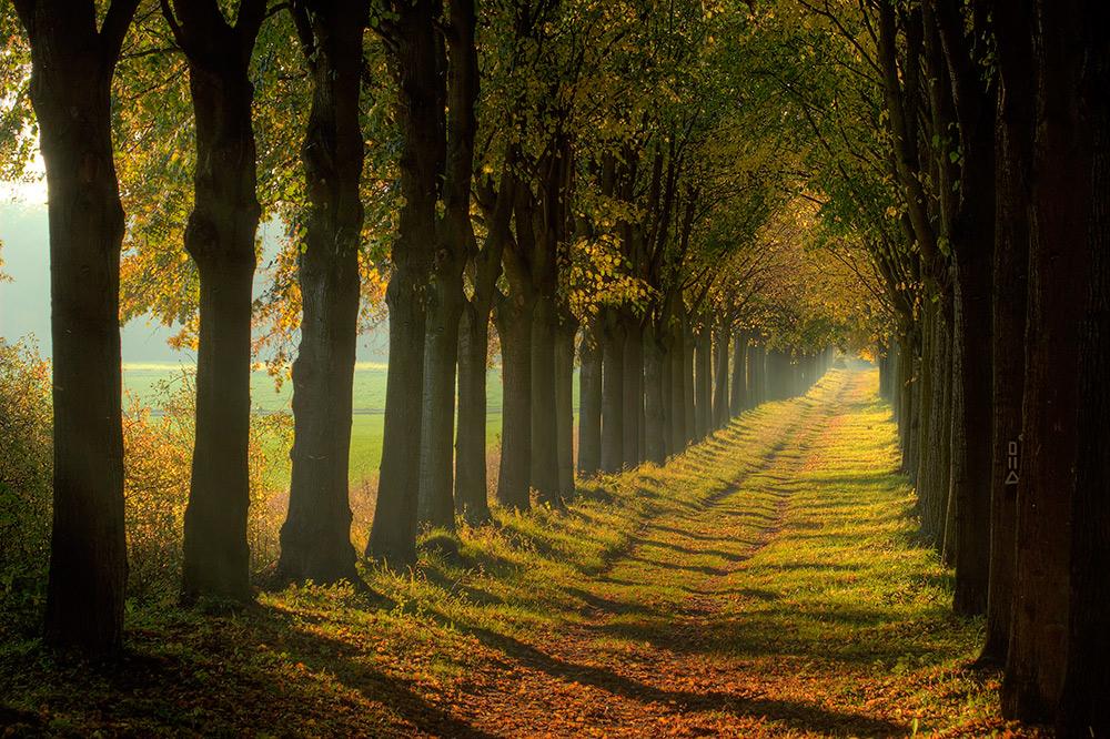 Weg in den Herbst...
