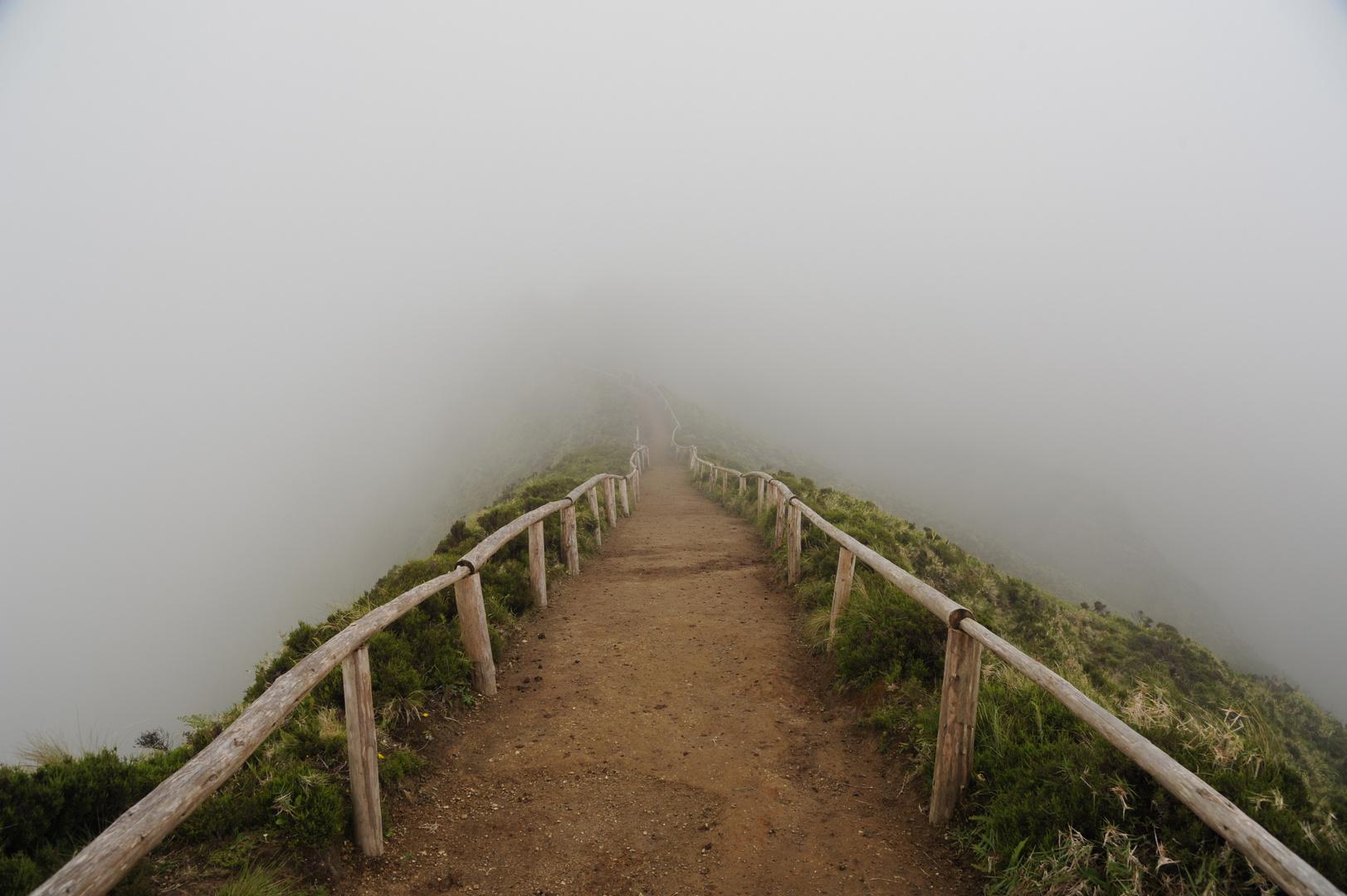 Weg in den Nebel....!