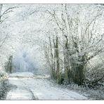 Weg in die Kälte