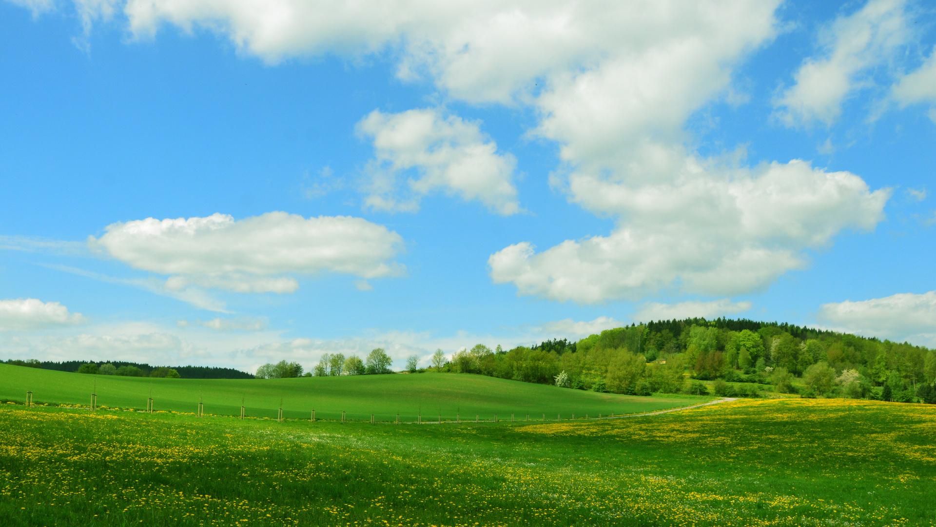 Weg nach Poppenwind (Thüringen)
