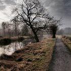 Weg zum De Witt See