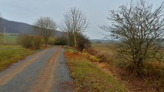 Weg zum See (camino al lago)