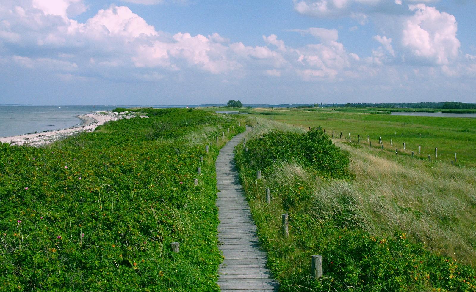 Weg zwischen Meer und Marsch