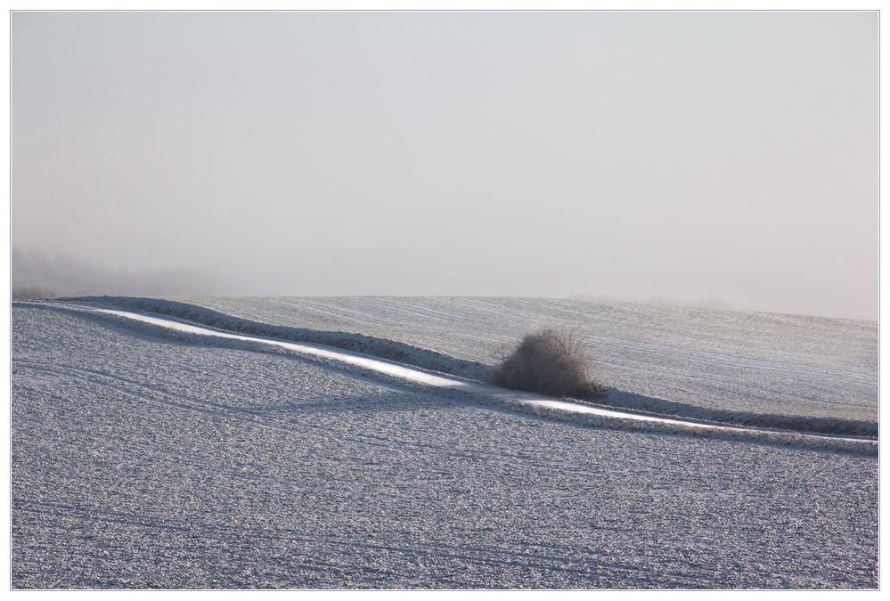 Wege abseits der Wege... - oder: ...das bunte Grau...