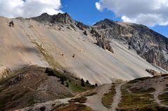 Wege am Col de Izoard