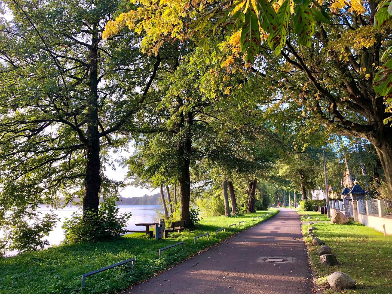 Wege am Schweriner See