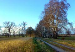 Wege der Altmark