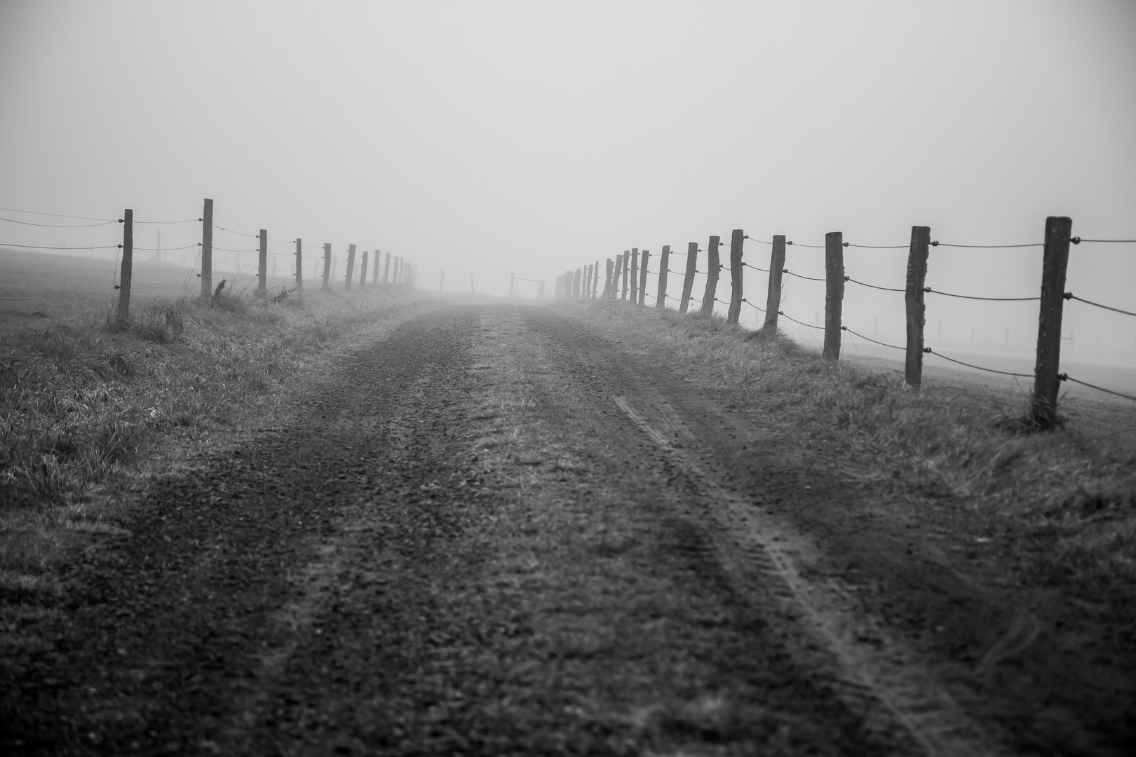 Wege im Nebel