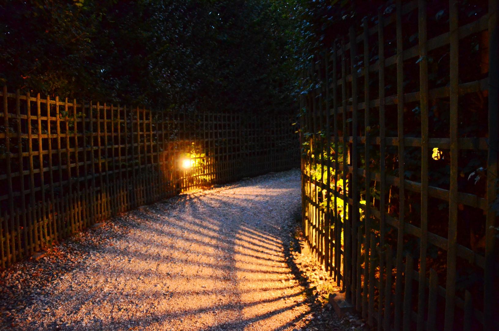Wege voll Licht