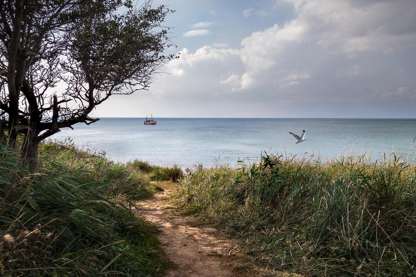 Wege zum Meer