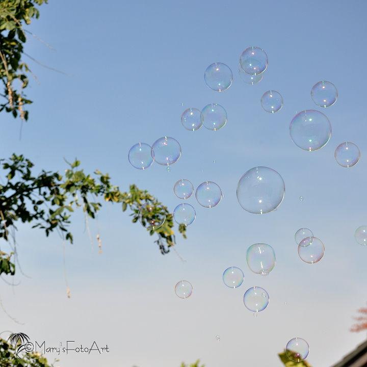 Nur Weggeblasen