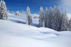 Weiche Schneeformen