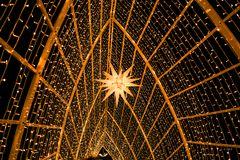 Weihnacht im goldenen Käfig