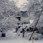 Weihnachten 2010