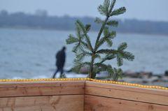 Weihnachten an der Lübecker Bucht