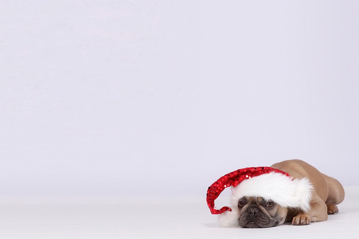Weihnachten ist kacke...