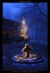 Weihnachten mitten im Pfälzer Wald