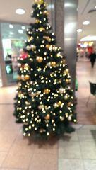 Weihnachten Tanne