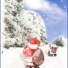 Weihnachts-Waldweg_1