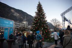 Weihnachtsbaum am Höhenweg