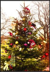 Weihnachtsbaum am Park der Freiheit