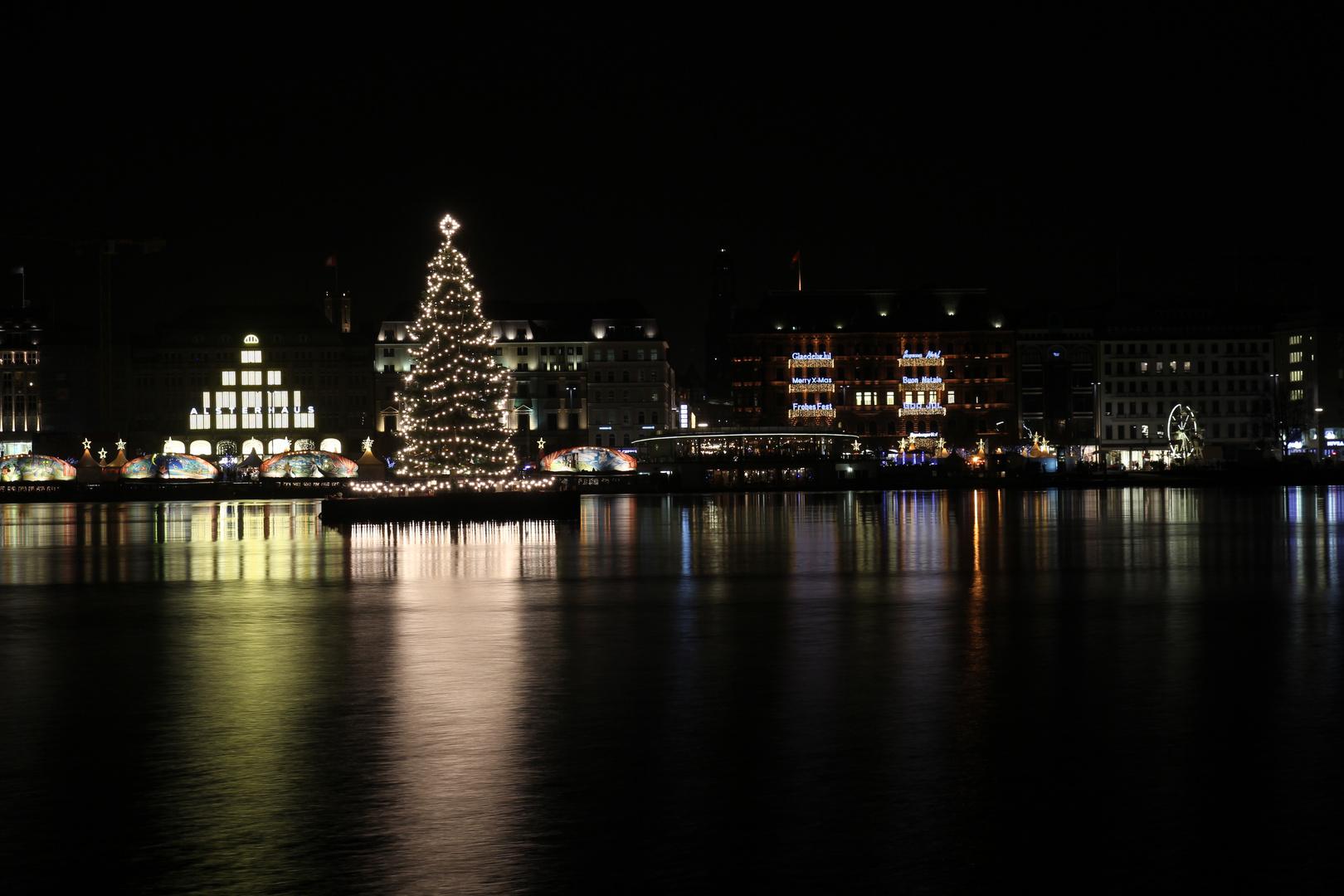 weihnachtsbaum an der alster foto bild deutschland. Black Bedroom Furniture Sets. Home Design Ideas