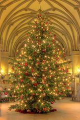 Weihnachtsbaum im Hamburger Rathaus