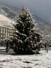 Weihnachtsbaum in Interlaken