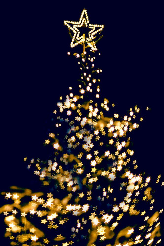 weihnachtsbaum mit sternen foto bild abstraktes. Black Bedroom Furniture Sets. Home Design Ideas