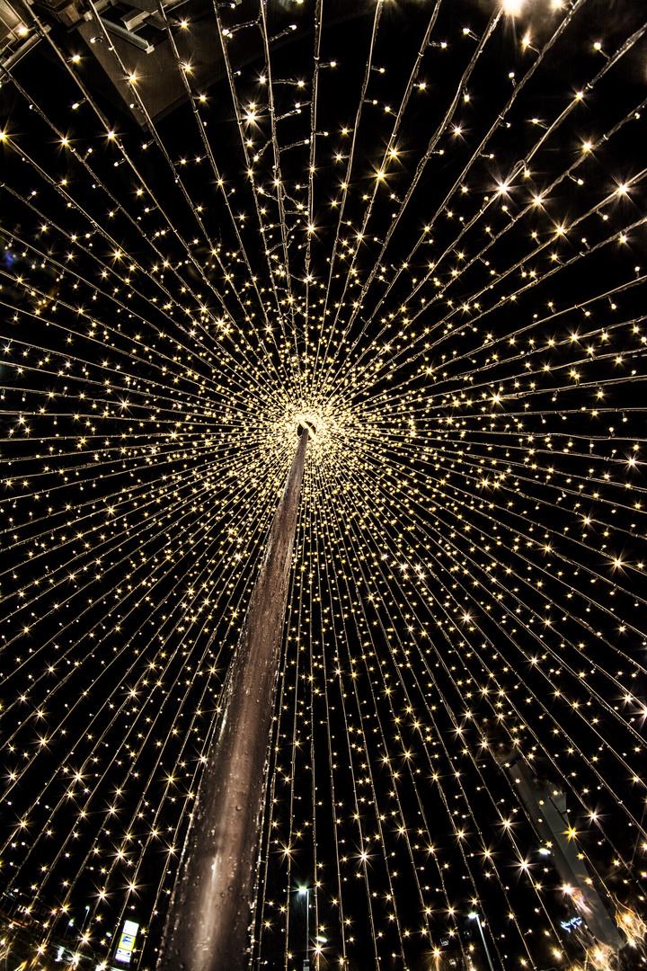 weihnachtsbaum von innen