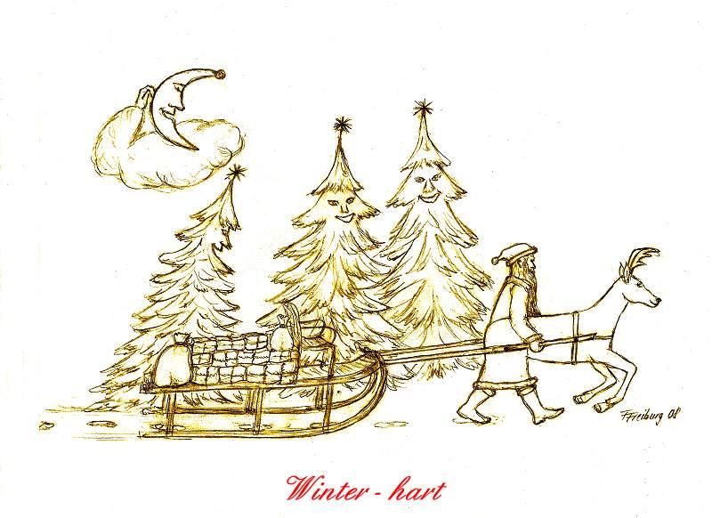 Weihnachtsbild 2008