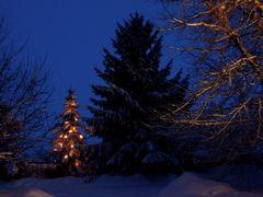 °°° Weihnachtsgrüße °°°